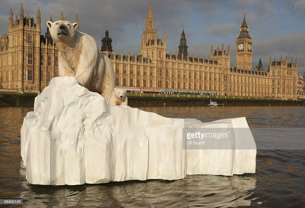 Polar bear floating down the Thames